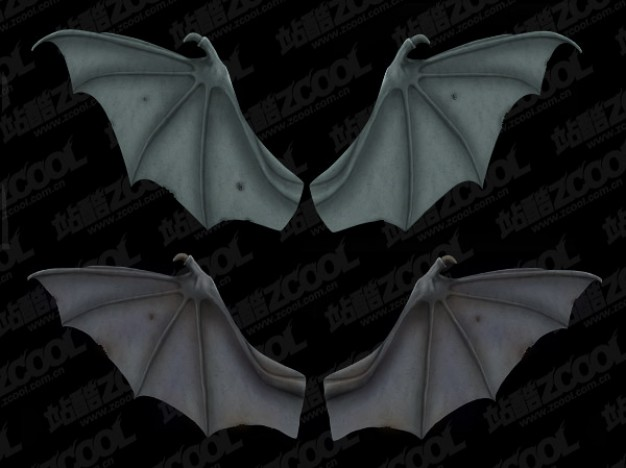 bat wings layered material with dark gray background