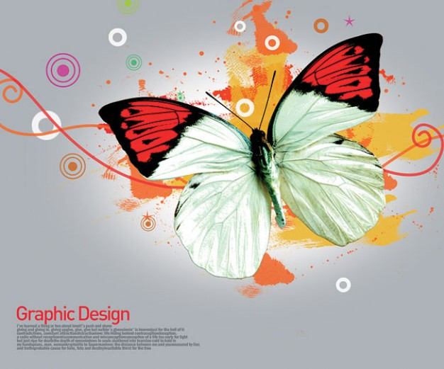 korean design elements layered with butterfly and circles