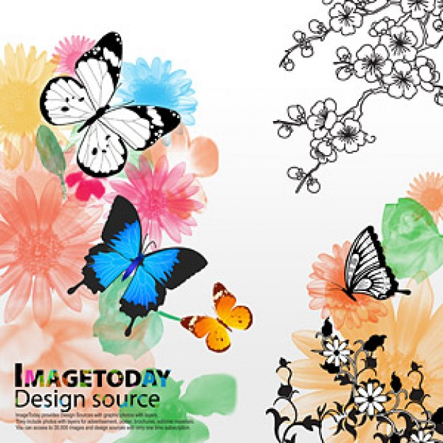 south korea trend of dynamic material with butterflies and flowers