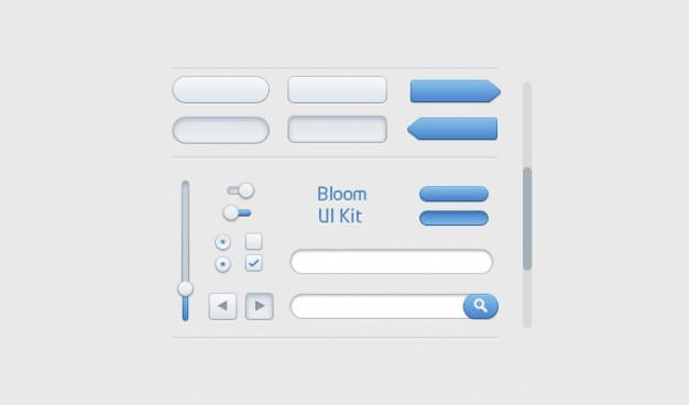 bloom ui kit with progress search form etc