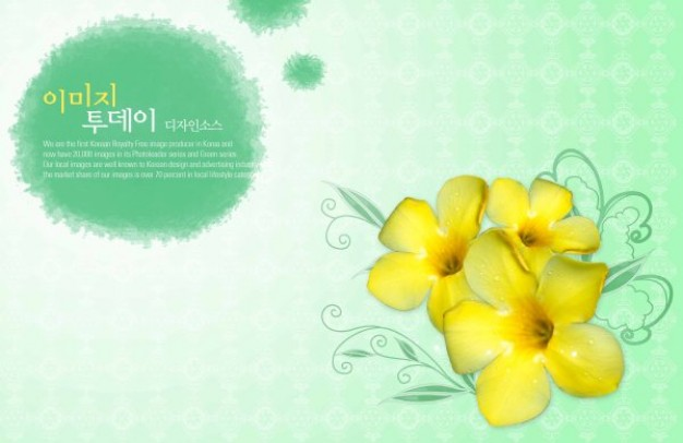 green elegant pattern with morning glory flowers background