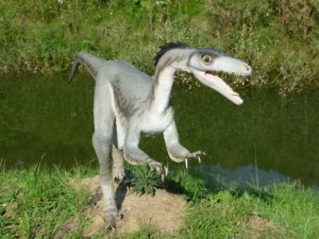 Dinosaur dinos walking at side of river about animal and field