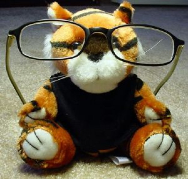 Gurkha professor Nepal tiger toy with glass about eyeglasses China