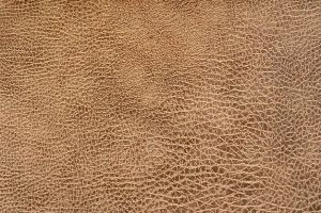 Leather shell pattern about Clothing Home and Garden Furniture Business Artificial leather