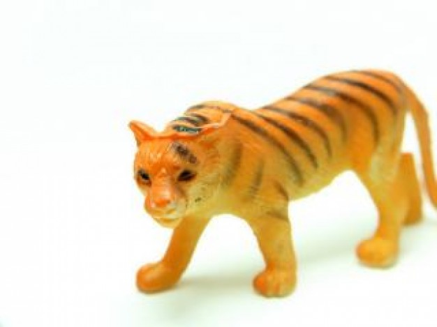 China plastic Wenzhou tiger about Siberian tiger Zhejiang