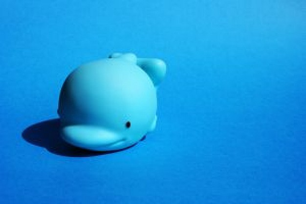 baby blue dolphin toy over blue background