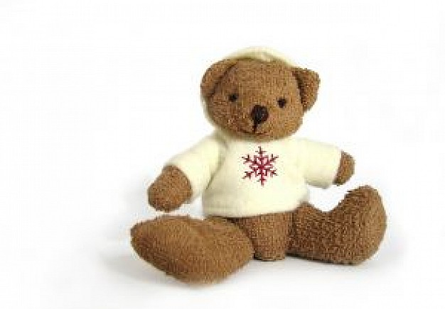 brown teddy bear with white clothing