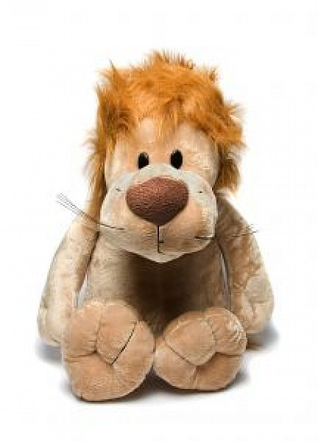brown teddy lion front view