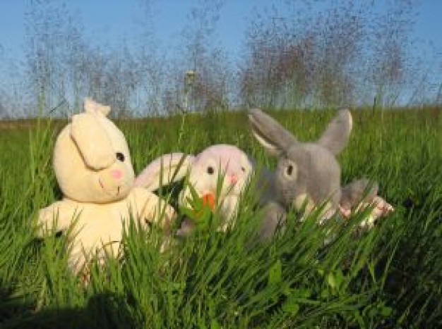 bunnies Easter in grass about YouTube Color Tanya Burr National Railroad Museum Petition Site