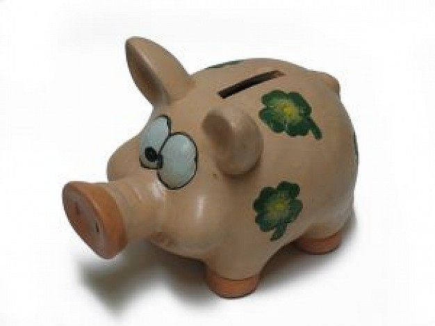 cute pig bank with long mouth and ears