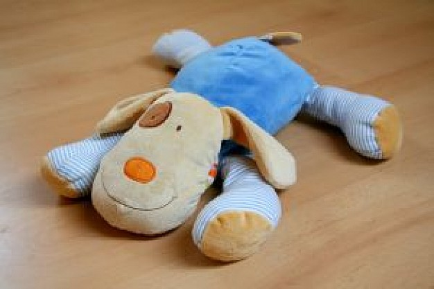 dog toy with blue clothing lying at wood floor