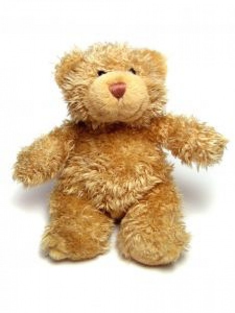 earth yellow teddy bear front view
