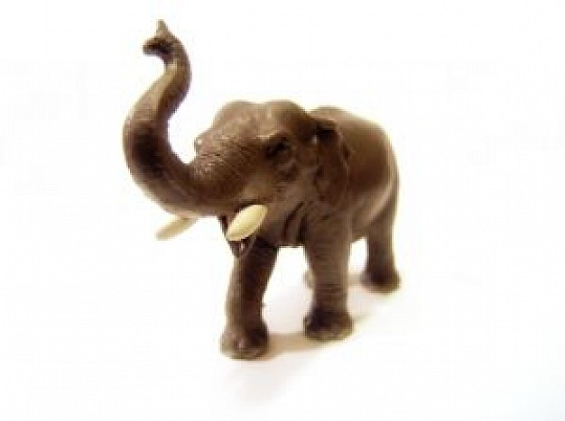 elephant statue with white background