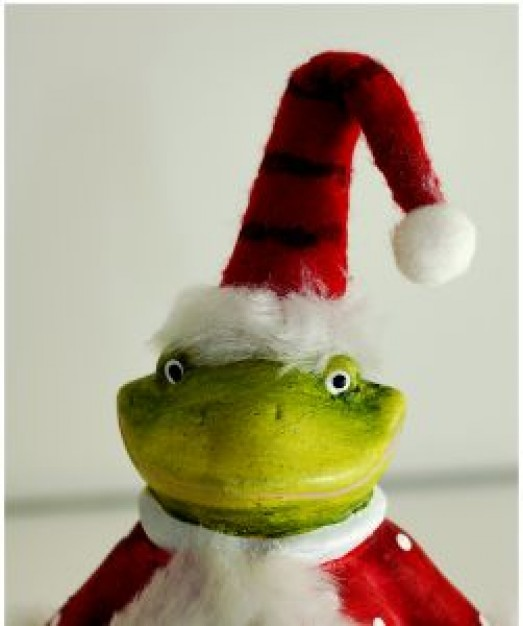 frog with christmas clothing and hat