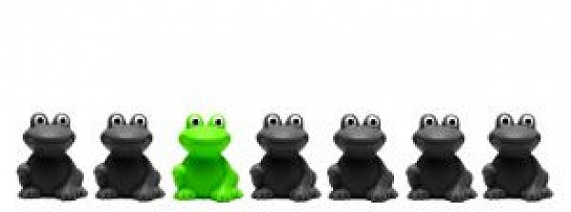 green and black frogs turn to one line