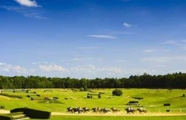 horse races landscape with blue sky and grassland