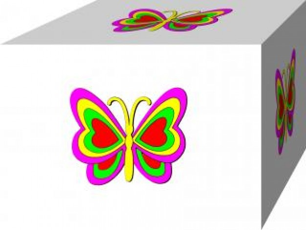 Insect butterfly in 3b box about gift box cover