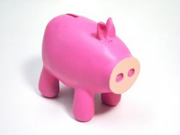 oink oink piggy bank side view feature