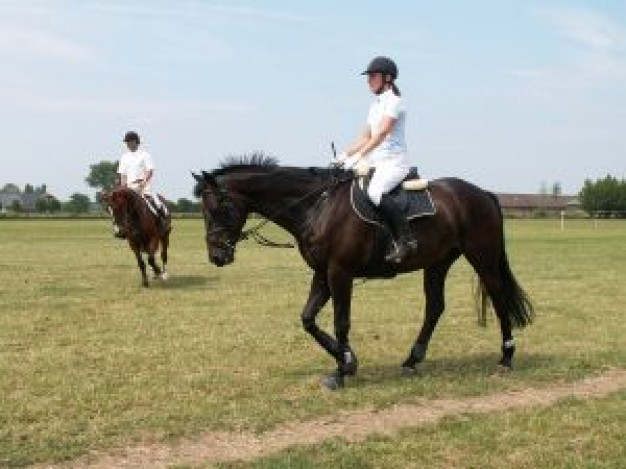 riders ride horse at grassland