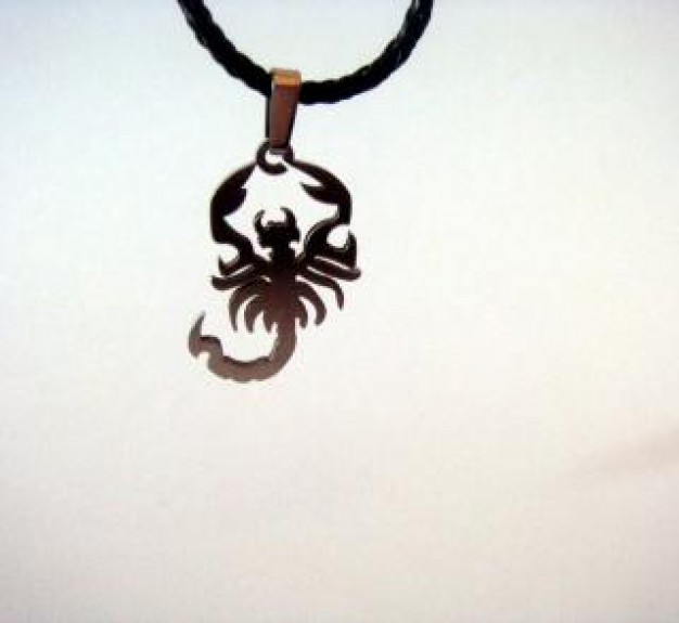 scorpion chain Necklace scorpion metallic over white background