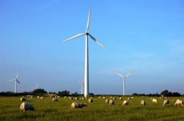 sheeps Grassland and windmills about blue sky background