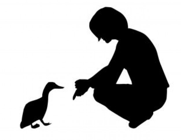 woman give food to duck silhouette