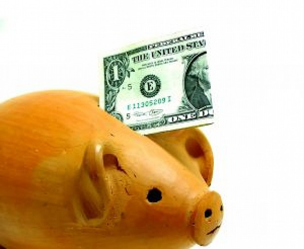 yellow piggy bank with dollar dropped in