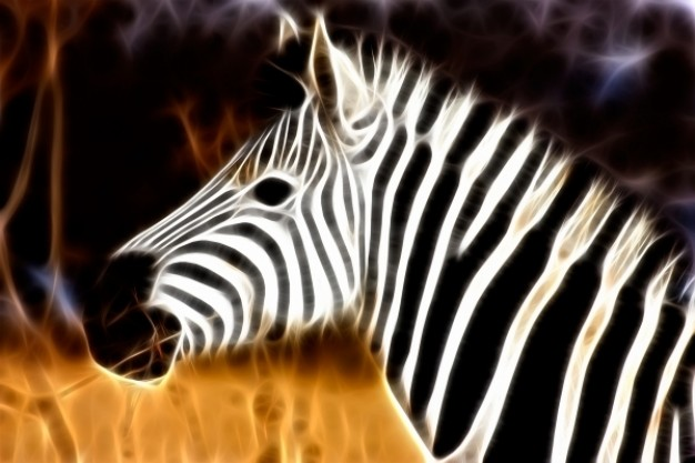 zebra profile abstract portrait over autumn grass