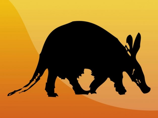 Aardvark side view silhouette of wild animal over orange background