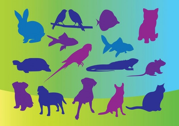 Pets Silhouettes with colorful background