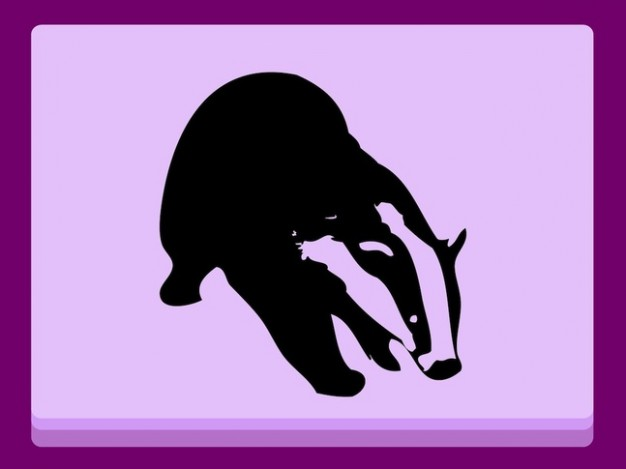 Badger animal outlines in pink frame vector silhouette