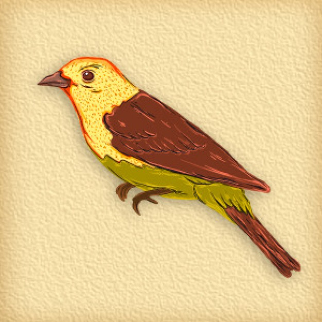 beautiful bird side view vector with earth background