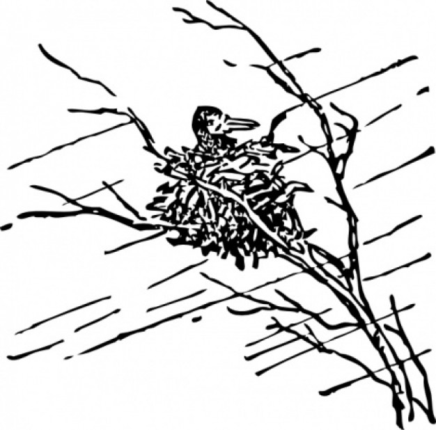 bird in net waiting out the storm clip art