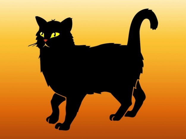 Black cat walking animal sticker with orange background