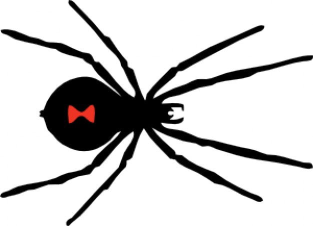 black Spider of Halloween Vectors in top view