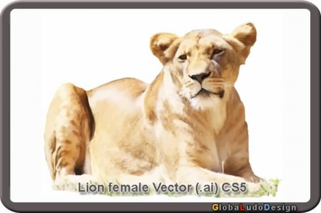 brown female lion vector in the frame