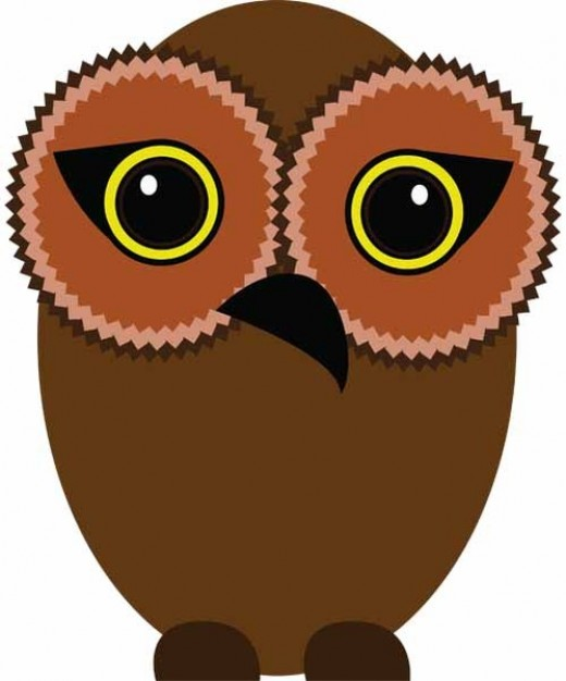 brown owl with big eyes in front view