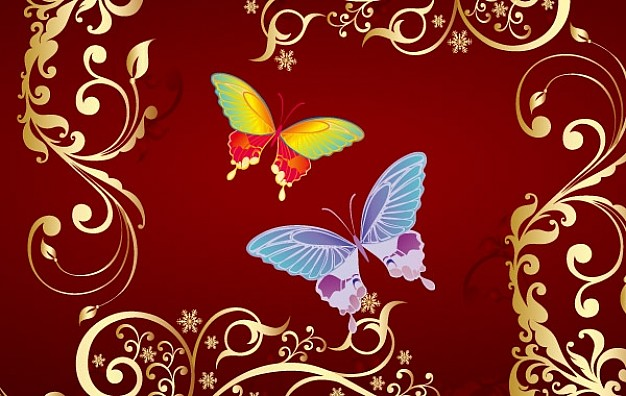 butterflies within a ornamental frame over rose red background