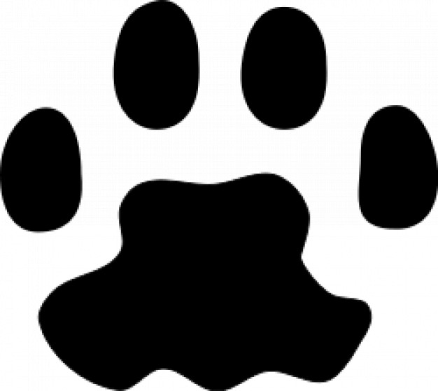 Cat paw print close-up clipart