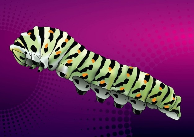 Caterpillar side view on purple background