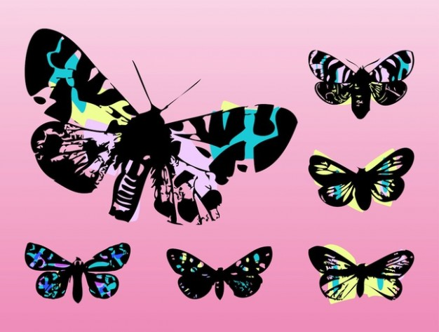 Colorful butterflies flying pop art with pink background