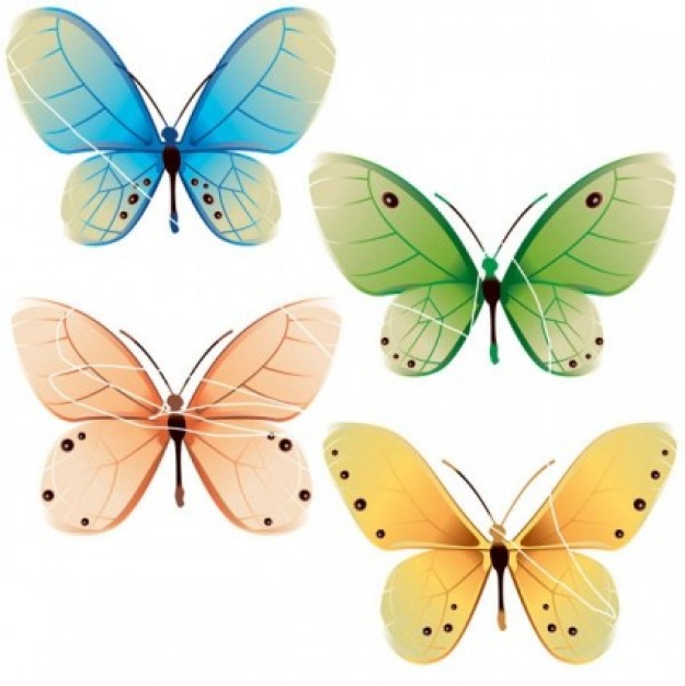 cute beautiful misc butterflies vector nature in green blue yellow pink bright