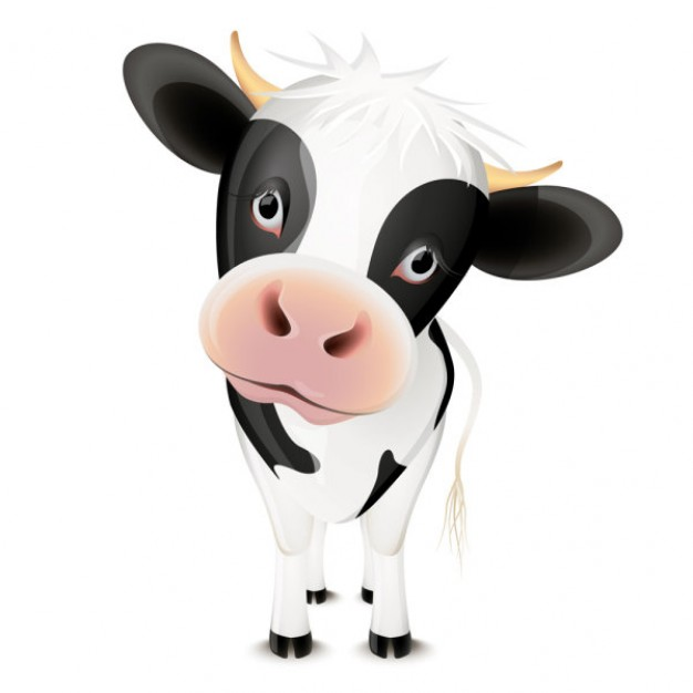 Cute cartoon cow front view vector material