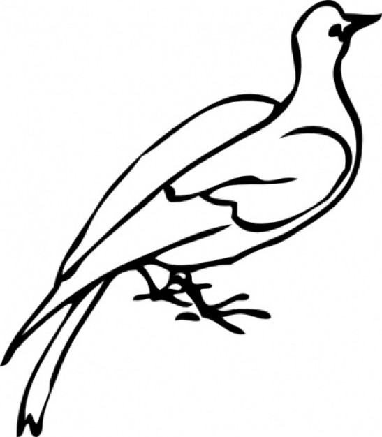 dove doodle clip art with White background