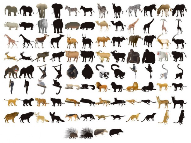 fifty models of animals and silhouettes vector material