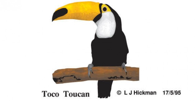 Free Toucan Bird standing on stick Vector Image