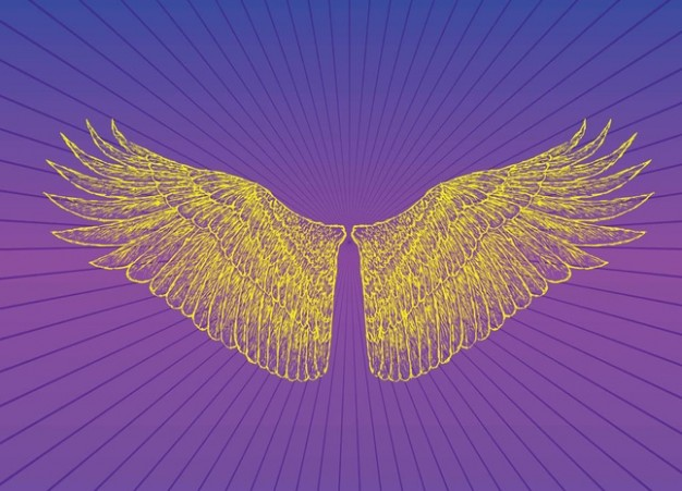 Heaven Wings Vector with radiant background