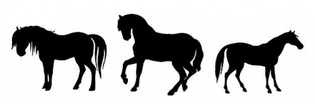 Horse silhouette vector material with white background