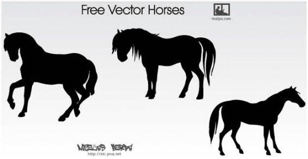 Horse Silhouettes Free Vector over gray background