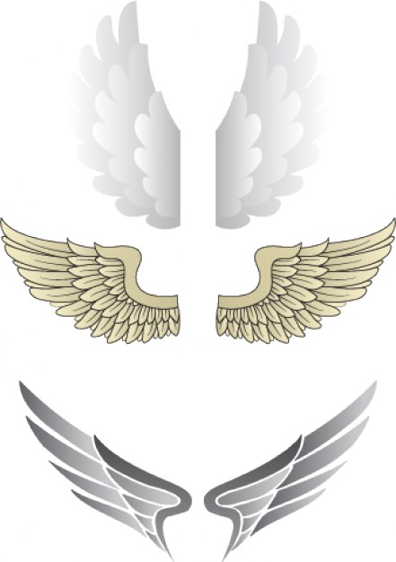 Eagle Wings vector including three different styles.